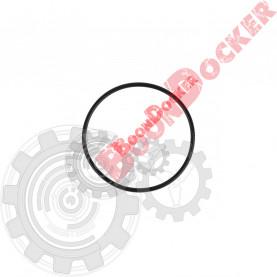 420650500 Кольцо уплотнительное масляного фильтра Ski-Doo Rotax 600/900ACE/1200 4-TEC 420650500